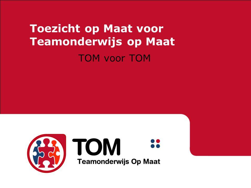 Toezicht op Maat voor Teamonderwijs op Maat