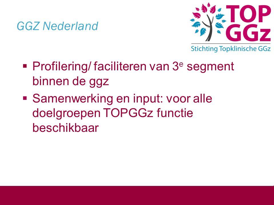 GGZ Nederland Profilering/ faciliteren van 3e segment binnen de ggz