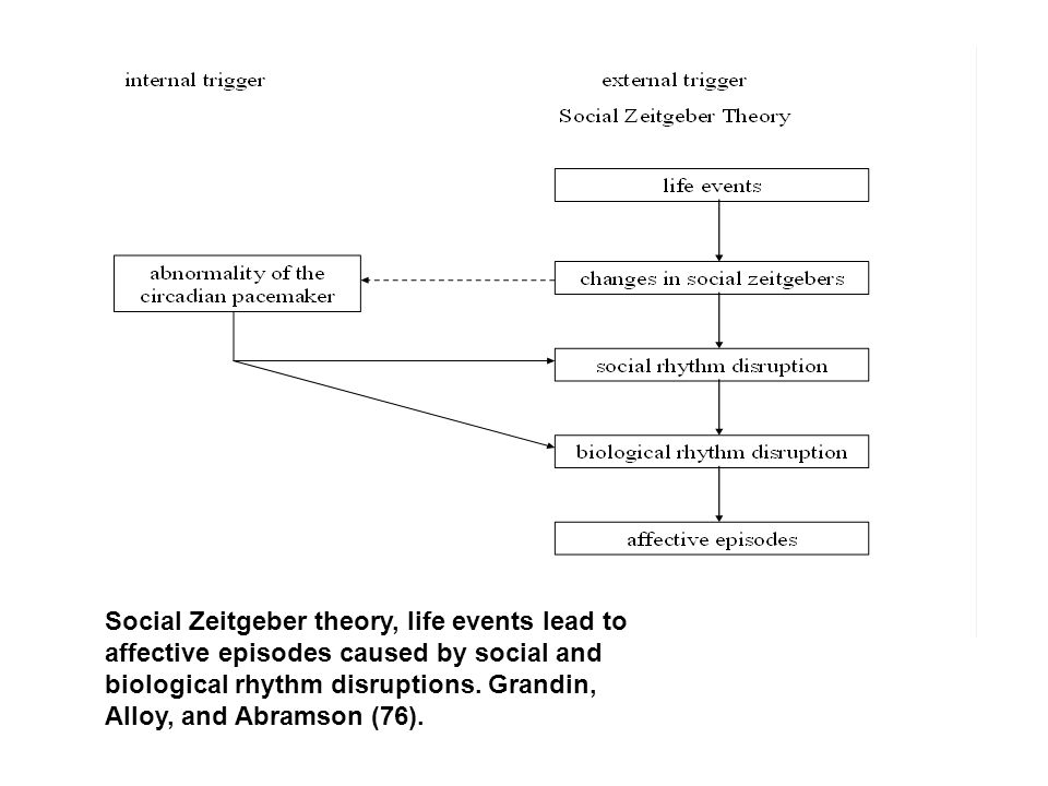 Social Zeitgeber theory, life events lead to affective episodes caused by social and biological rhythm disruptions.
