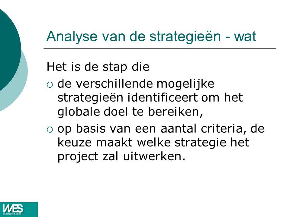 Analyse van de strategieën - wat