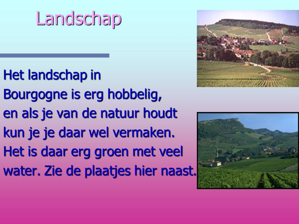Landschap Het landschap in Bourgogne is erg hobbelig,