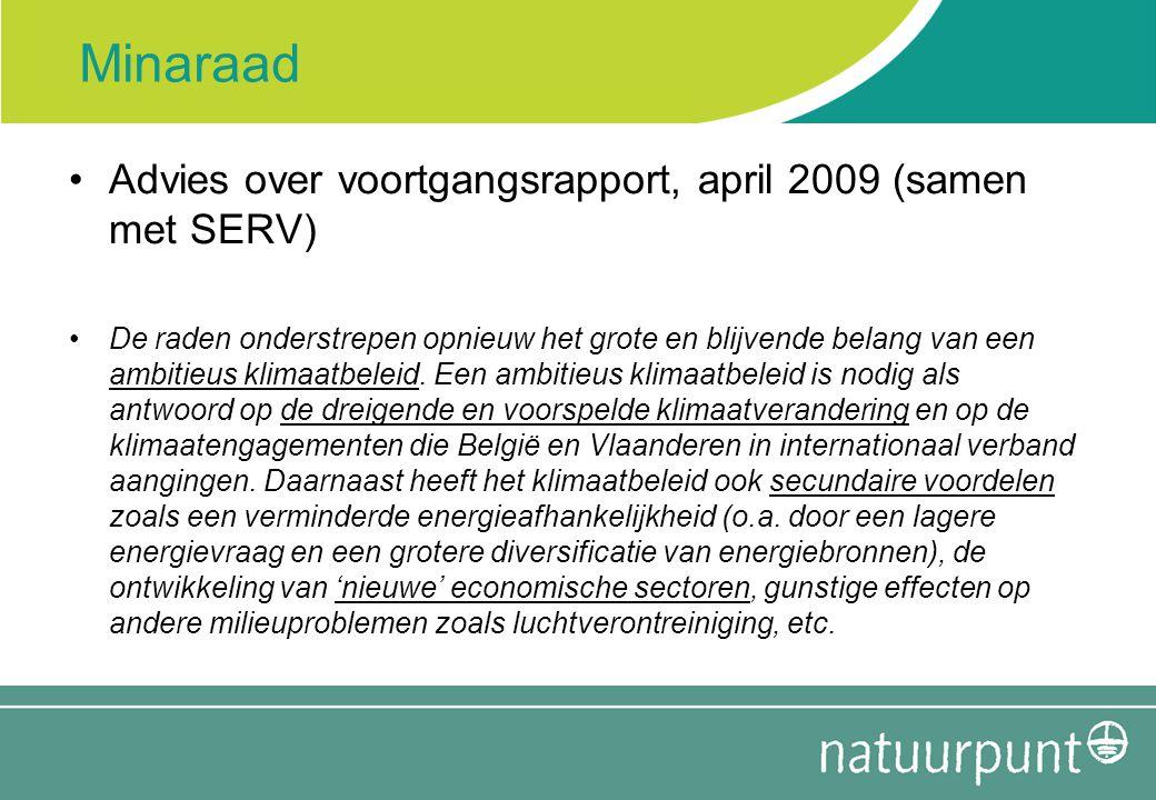 Minaraad Advies over voortgangsrapport, april 2009 (samen met SERV)