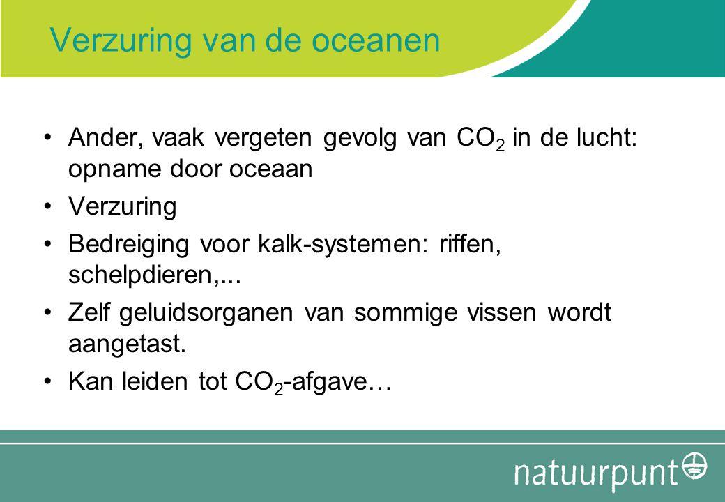 Verzuring van de oceanen