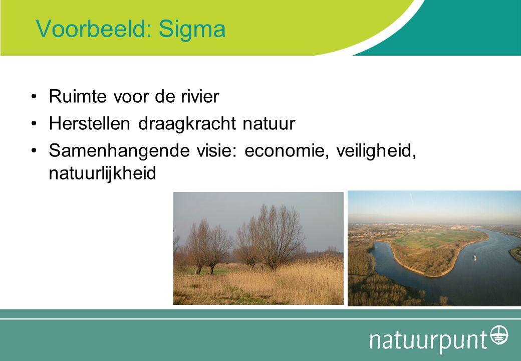 Voorbeeld: Sigma Ruimte voor de rivier Herstellen draagkracht natuur