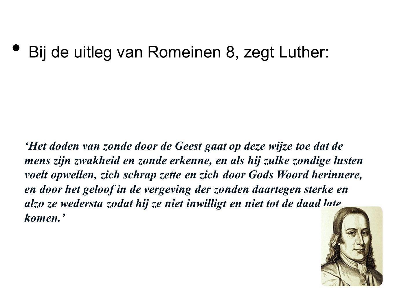Bij de uitleg van Romeinen 8, zegt Luther: