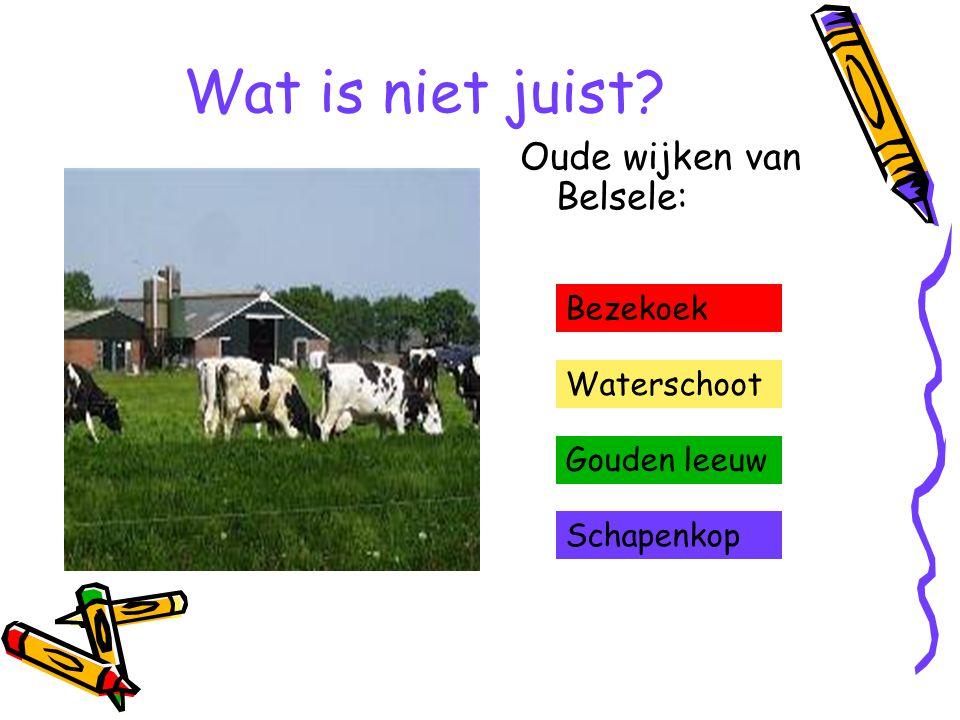Wat is niet juist Oude wijken van Belsele: Bezekoek Waterschoot