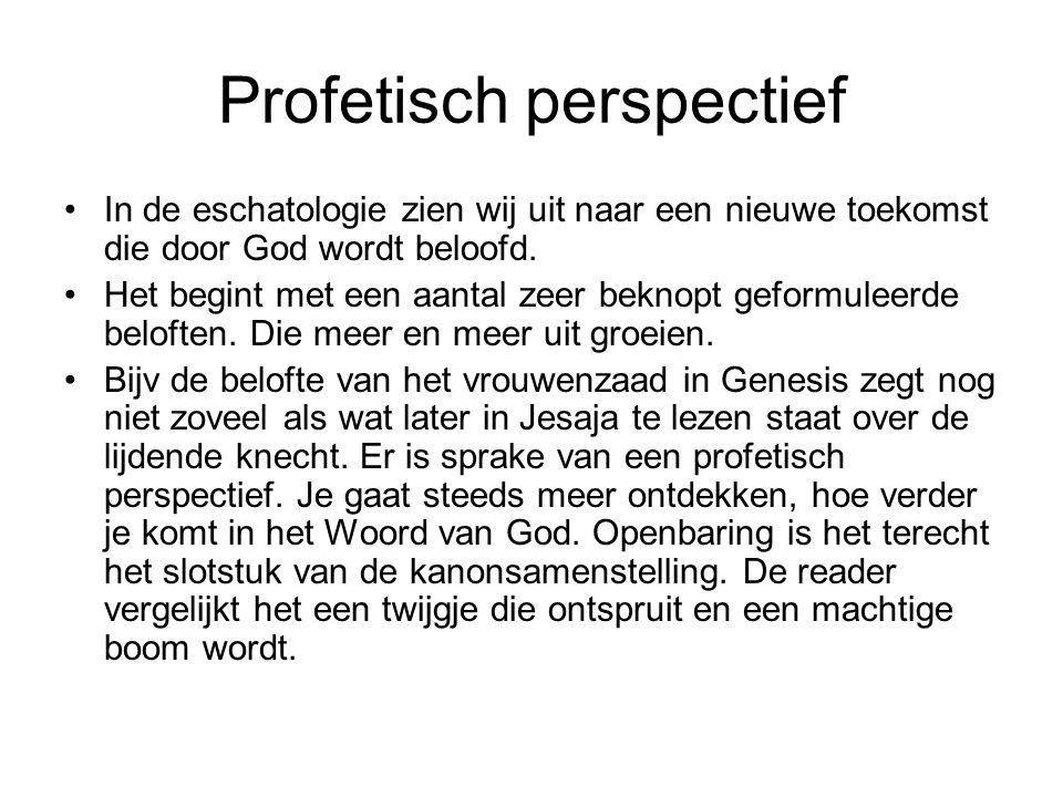 Profetisch perspectief