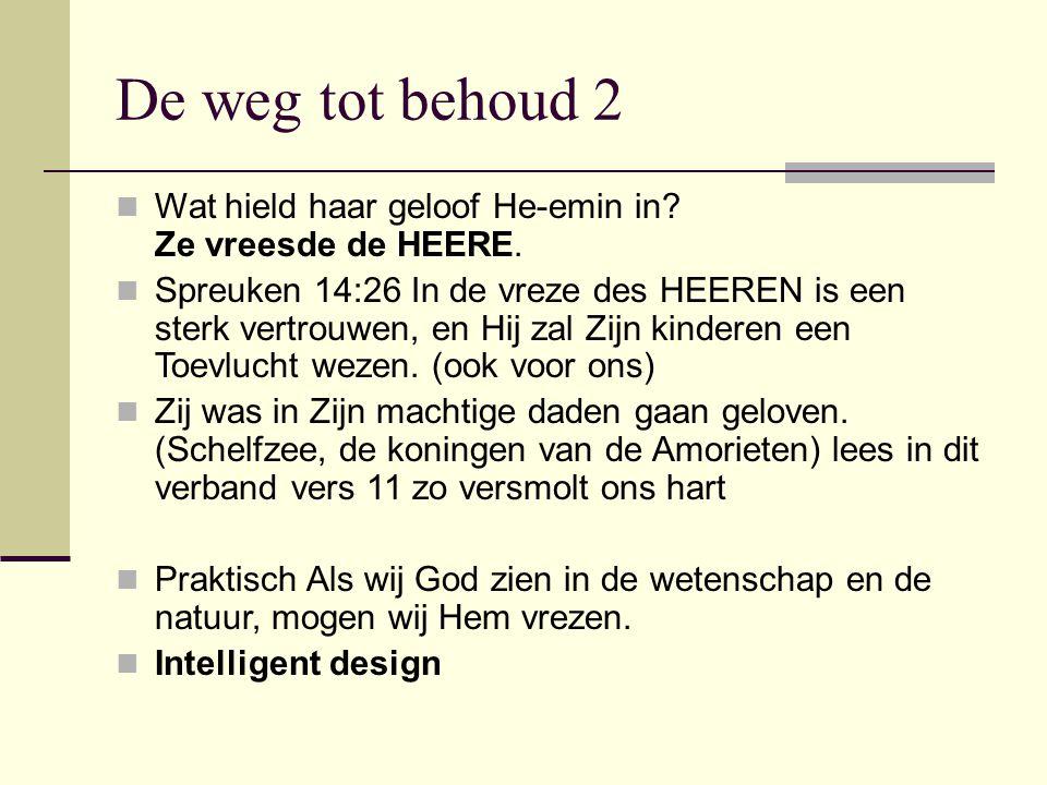De weg tot behoud 2 Wat hield haar geloof He-emin in Ze vreesde de HEERE.