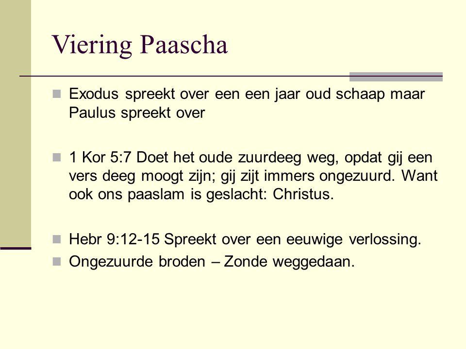 Viering Paascha Exodus spreekt over een een jaar oud schaap maar Paulus spreekt over.