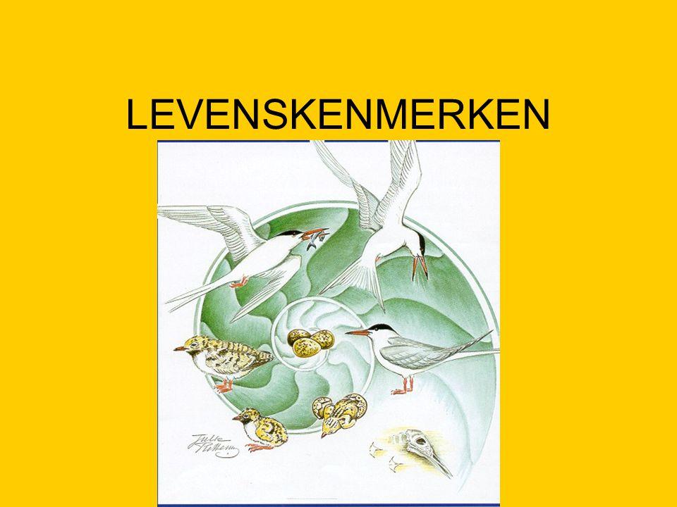 LEVENSKENMERKEN