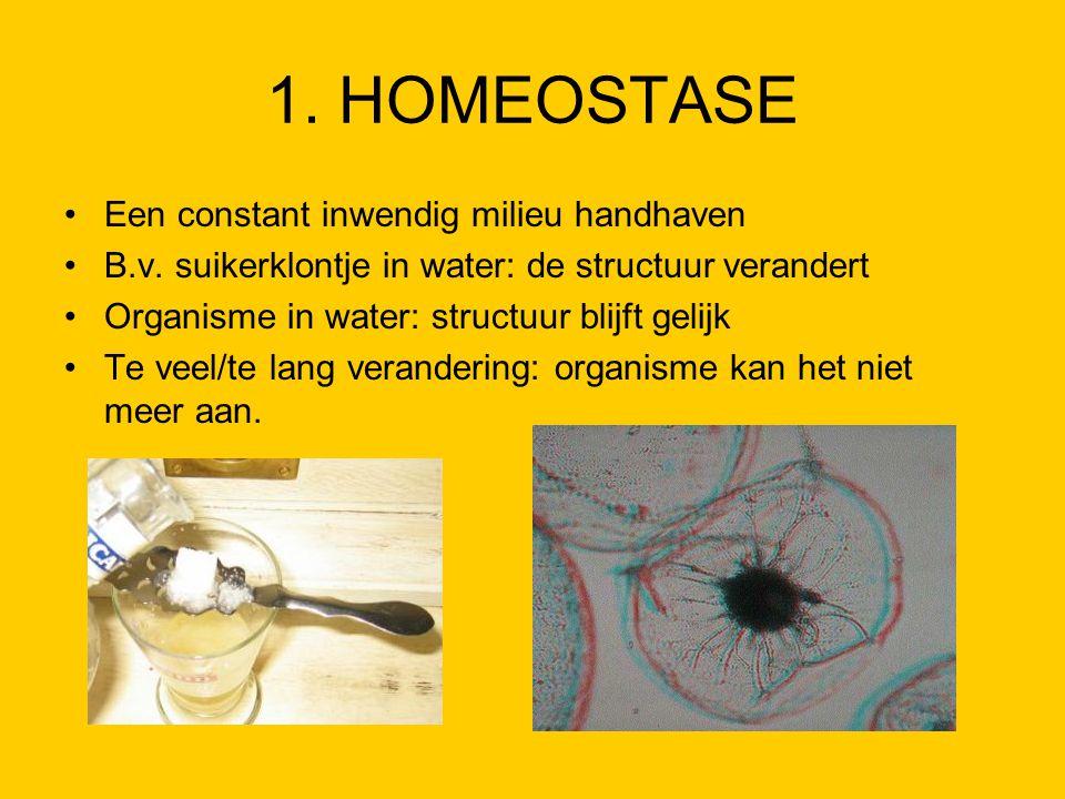 1. HOMEOSTASE Een constant inwendig milieu handhaven