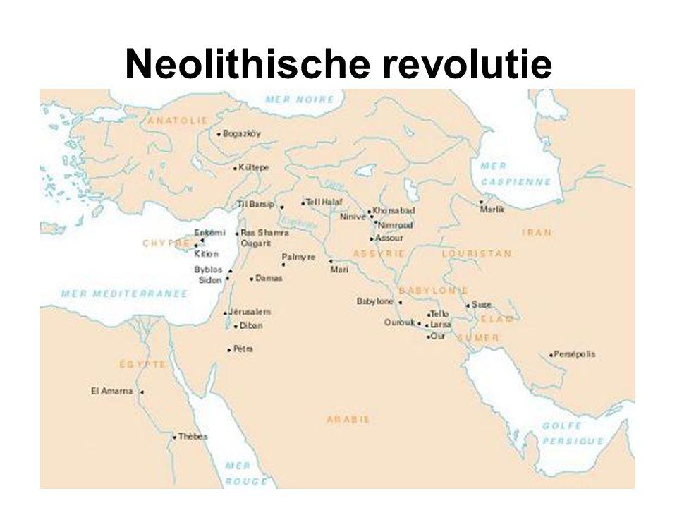 Neolithische revolutie