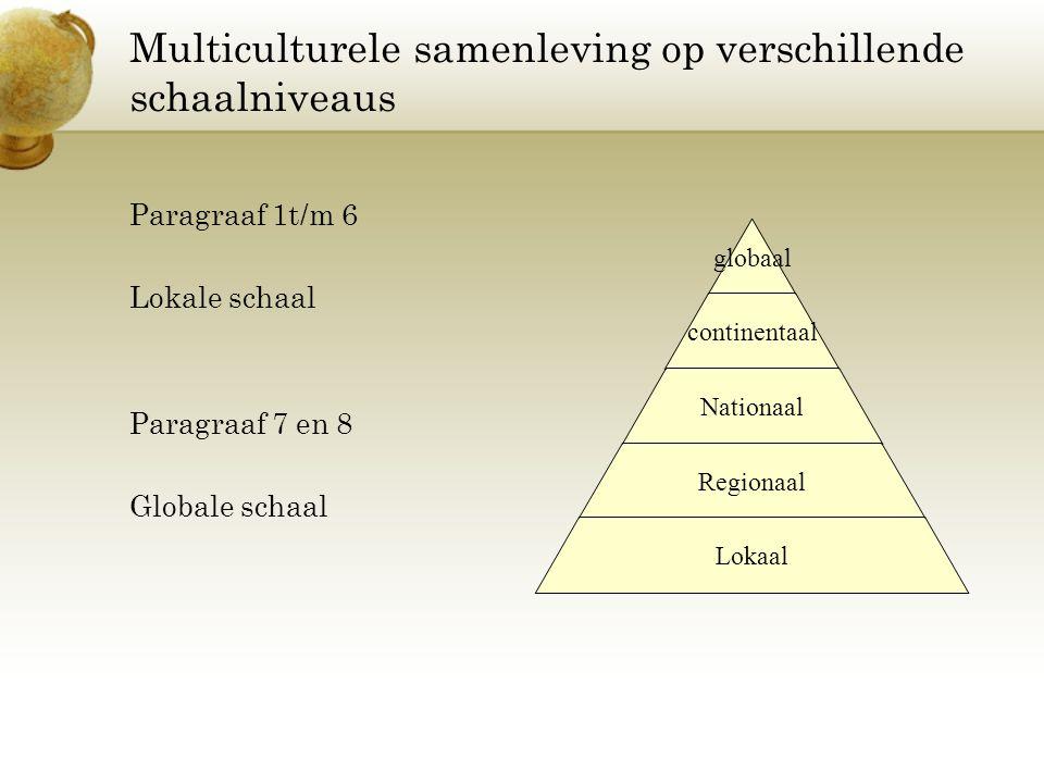 Multiculturele samenleving op verschillende schaalniveaus