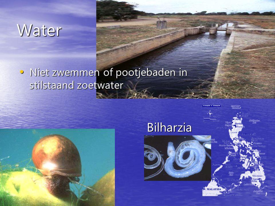 Water Bilharzia Niet zwemmen of pootjebaden in stilstaand zoetwater