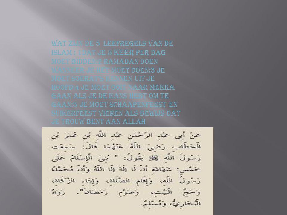 Wat zijn de 5 leefregels van de Islam : 1Dat je 5 keer per dag moet bidden:2 Ramadan doen wanneer je het moet doen:3 je moet soerat's kennen uit je hoofd:4 je moet ooit naar Mekka gaan als je de kans hebt om te gaan:5 je moet schaapenfeest en suikerfeest vieren als bewijs dat je trouw bent aan Allah