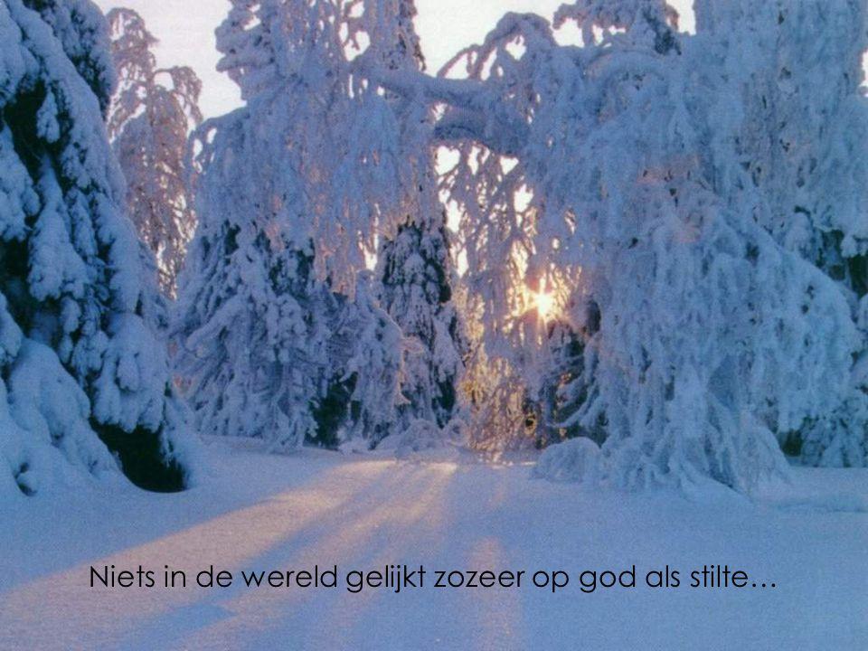 Niets in de wereld gelijkt zozeer op god als stilte…