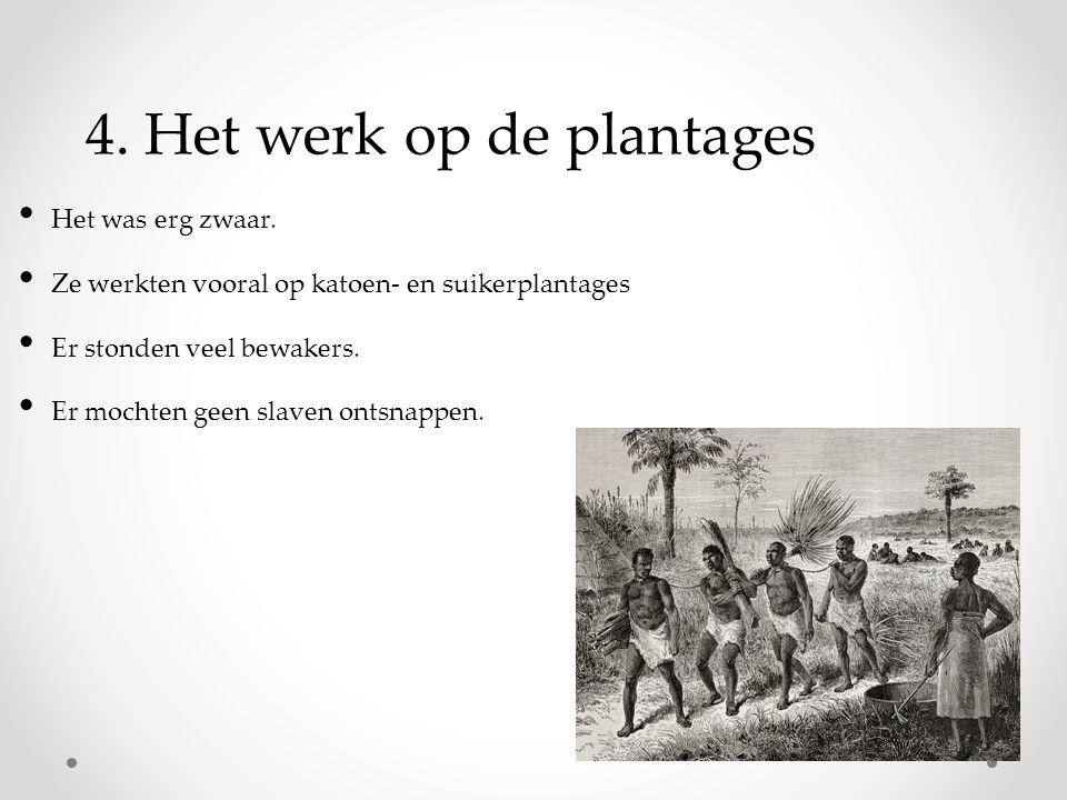 4. Het werk op de plantages