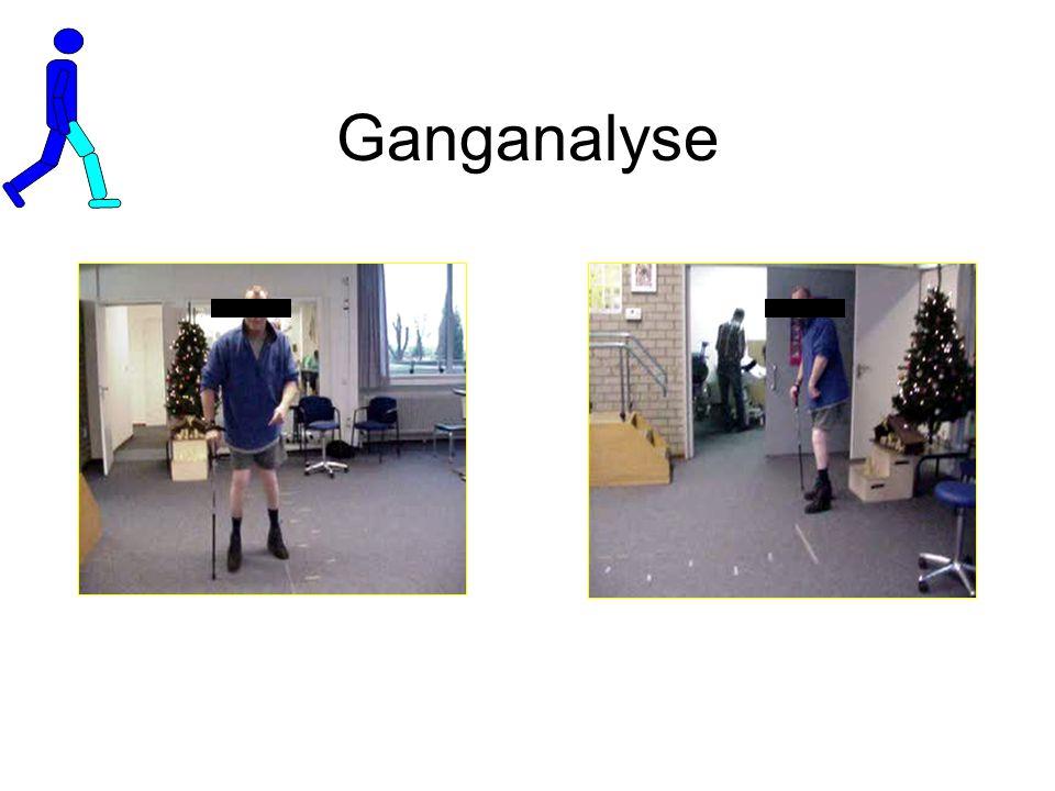 Ganganalyse