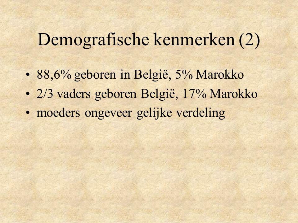 Demografische kenmerken (2)