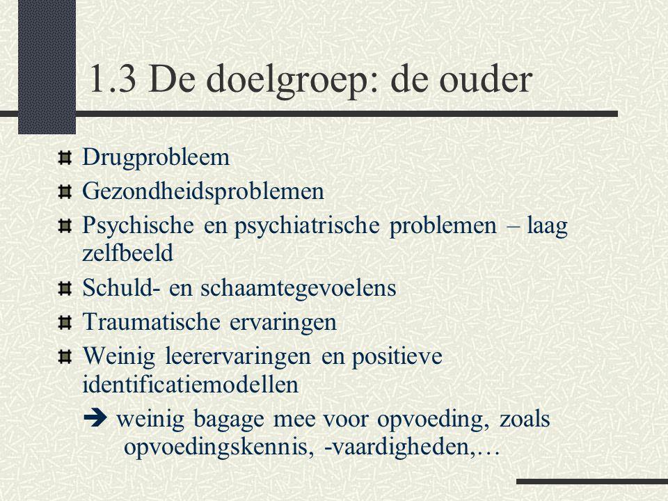 1.3 De doelgroep: de ouder Drugprobleem Gezondheidsproblemen