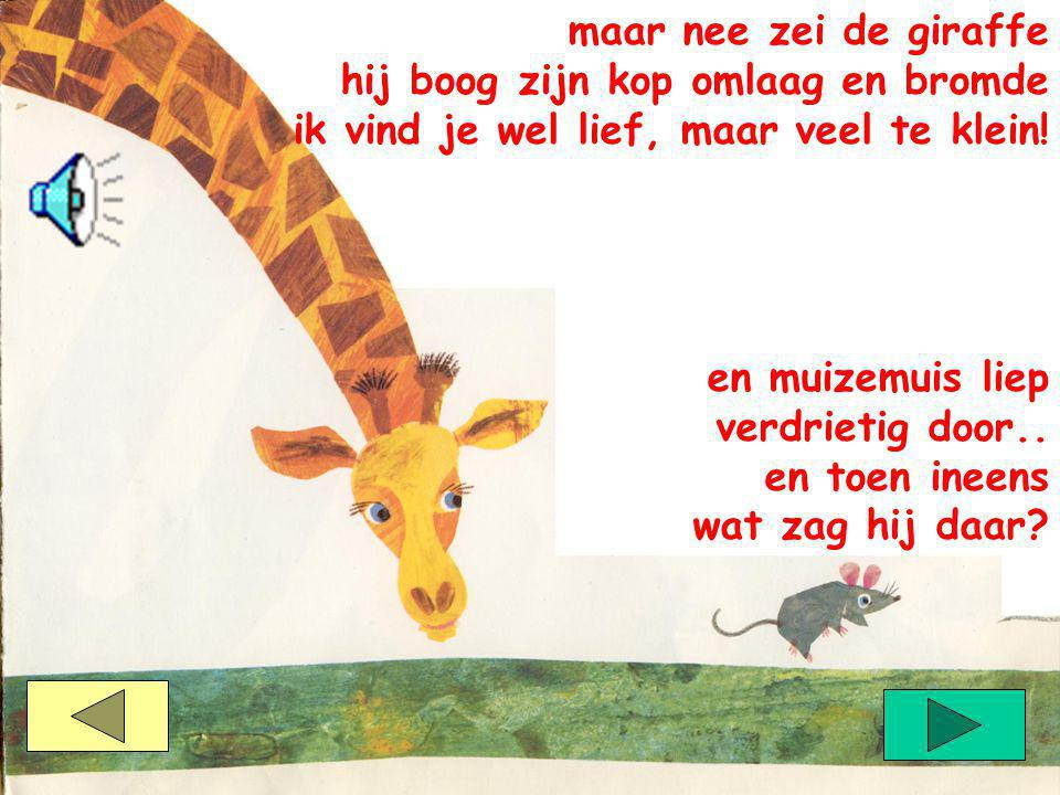 maar nee zei de giraffe hij boog zijn kop omlaag en bromde. ik vind je wel lief, maar veel te klein!
