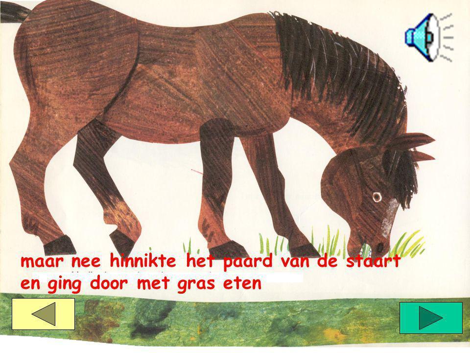 maar nee hinnikte het paard van de staart