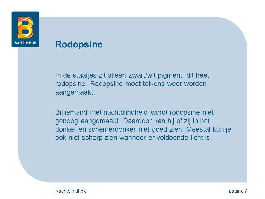 Rodopsine In de staafjes zit alleen zwart/wit pigment, dit heet rodopsine. Rodopsine moet telkens weer worden aangemaakt.