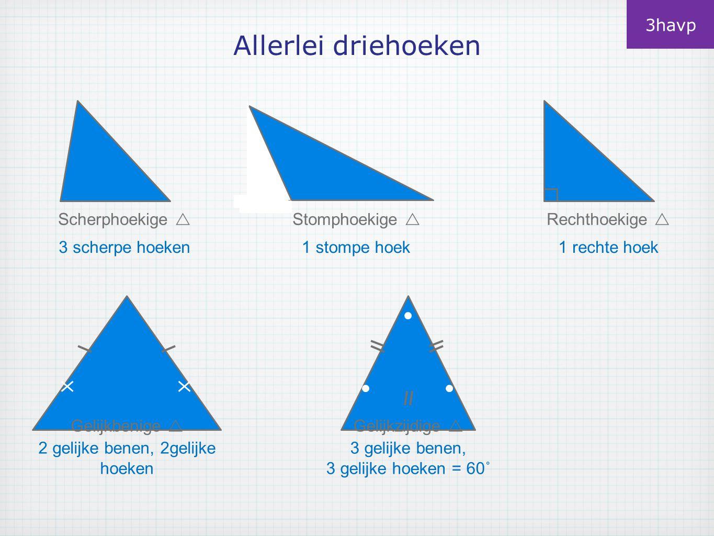 Allerlei driehoeken 3havp Scherphoekige  Stomphoekige 