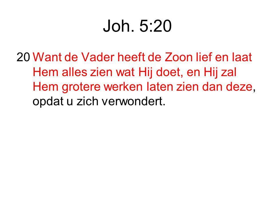 Joh. 5:20