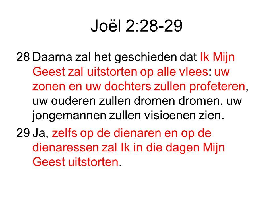 Joël 2:28-29