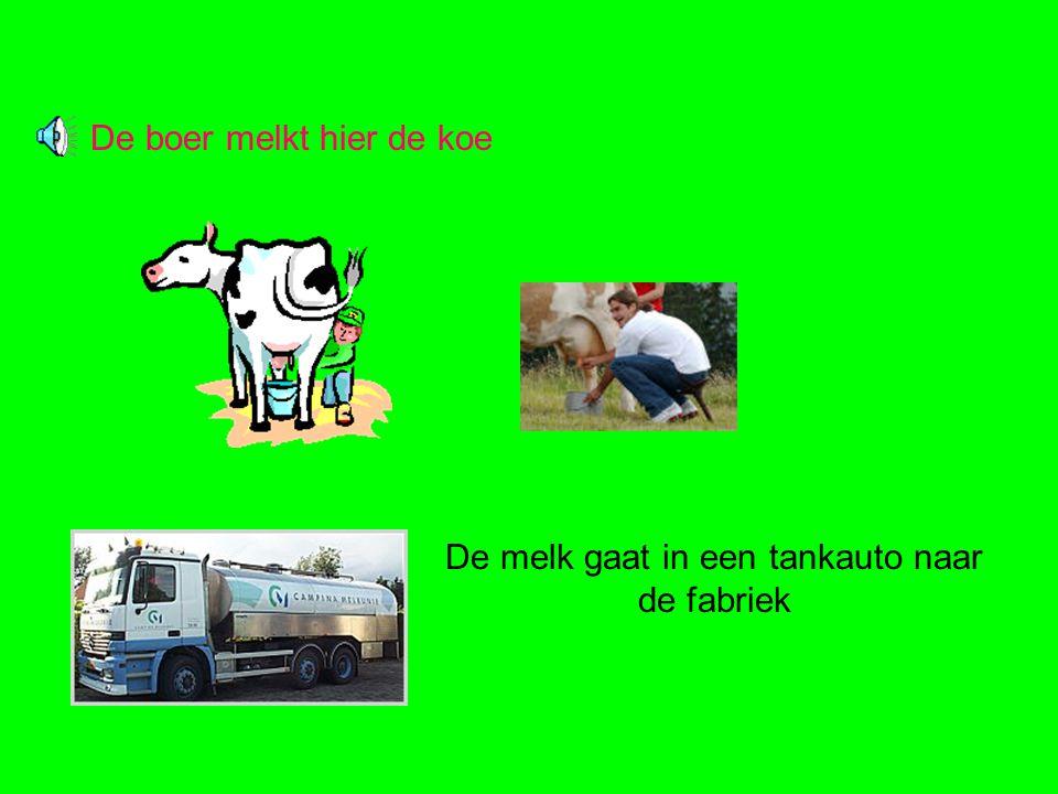 De boer melkt hier de koe