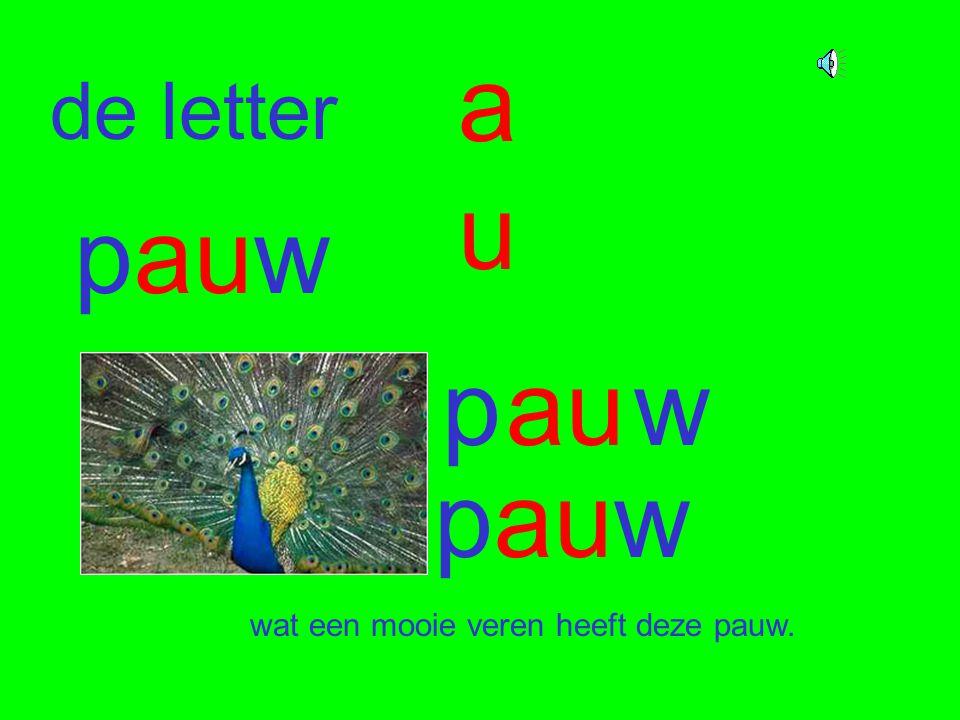 au de letter pauw p au w pauw wat een mooie veren heeft deze pauw.