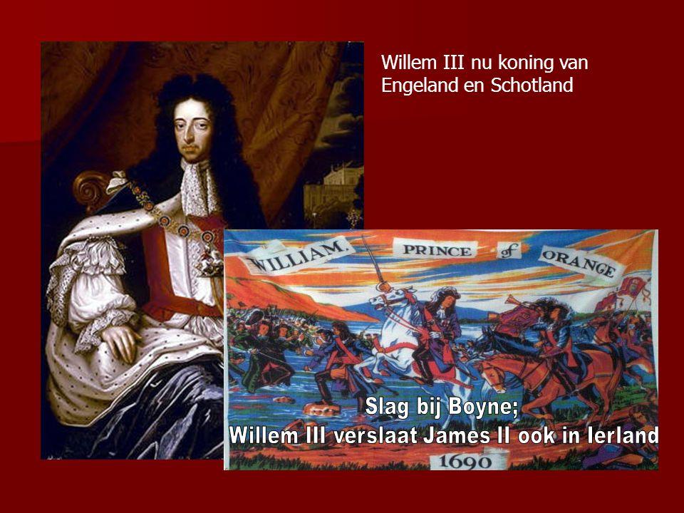 Willem III verslaat James II ook in Ierland
