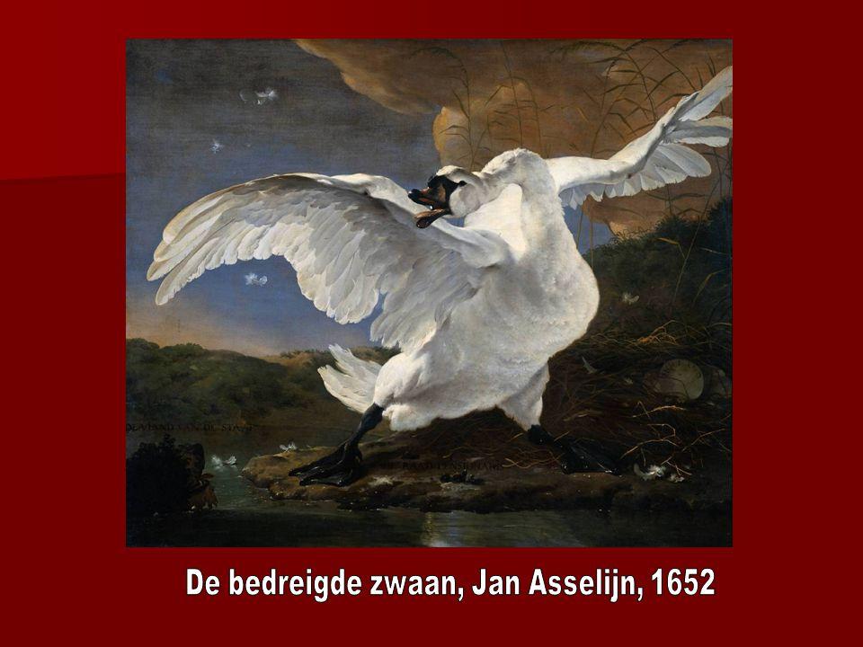De bedreigde zwaan, Jan Asselijn, 1652