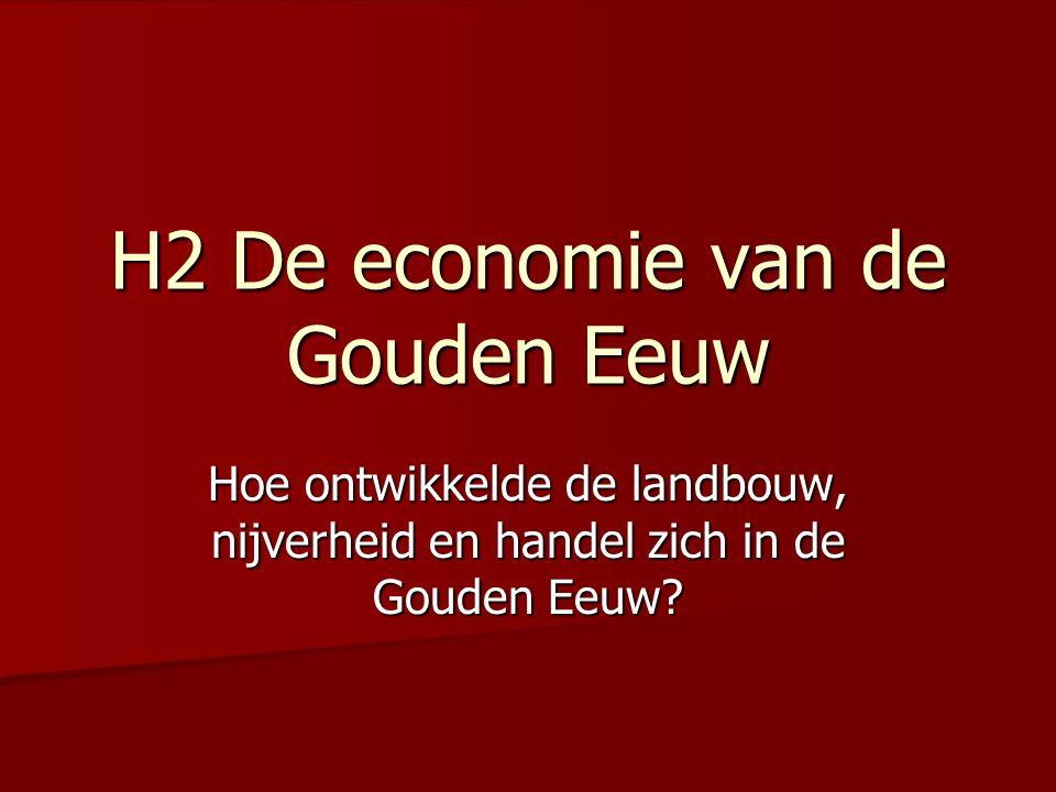 H2 De economie van de Gouden Eeuw
