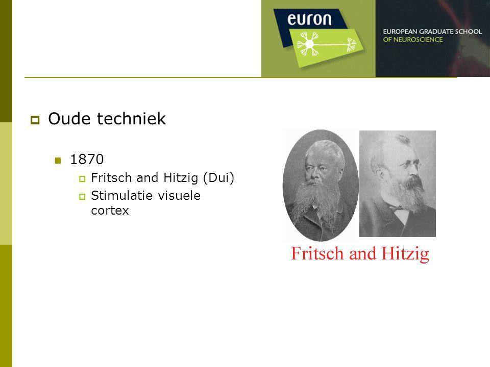 Oude techniek 1870 Fritsch and Hitzig (Dui) Stimulatie visuele cortex