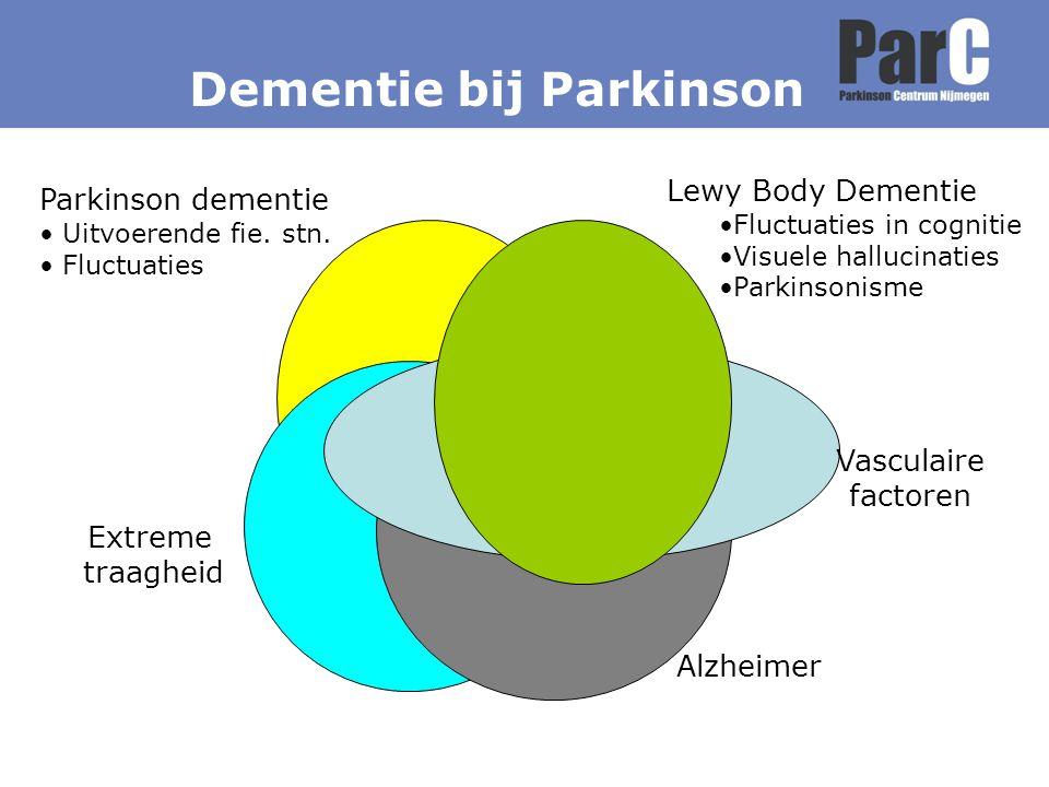Dementie bij Parkinson