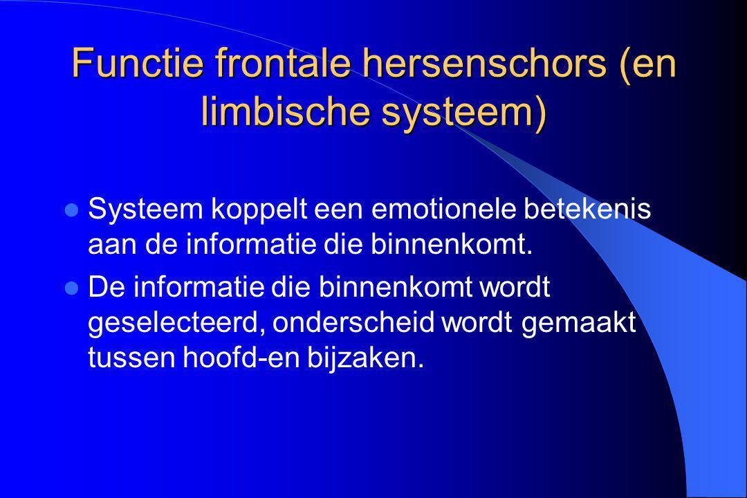 Functie frontale hersenschors (en limbische systeem)