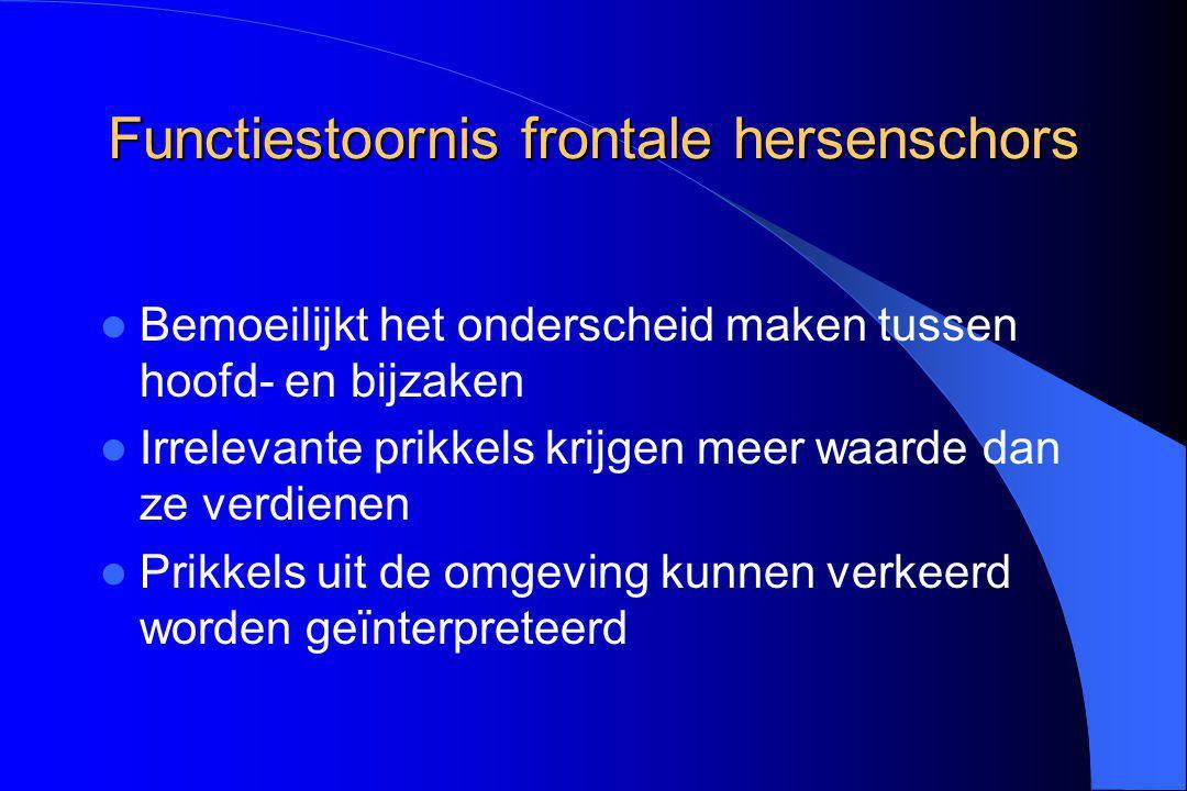 Functiestoornis frontale hersenschors
