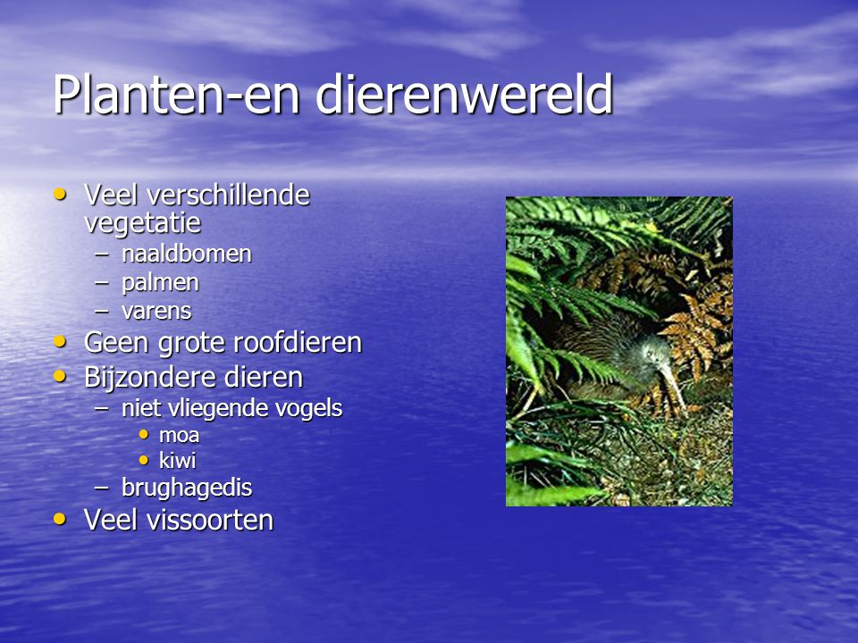 Planten-en dierenwereld