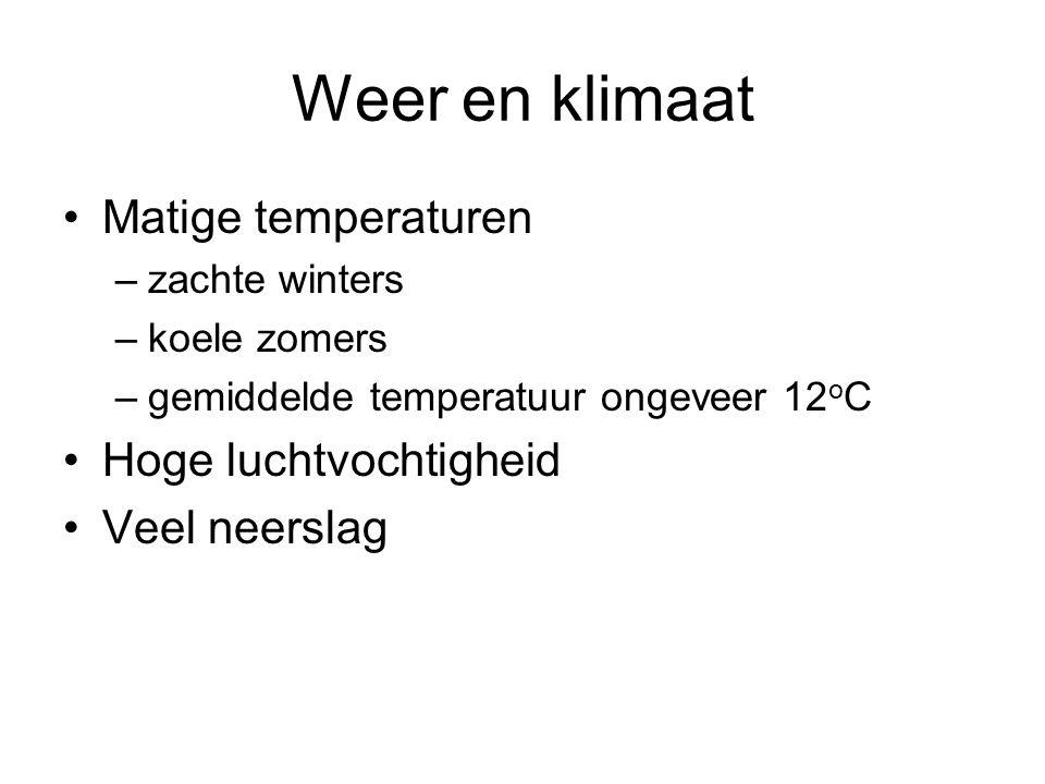 Weer en klimaat Matige temperaturen Hoge luchtvochtigheid
