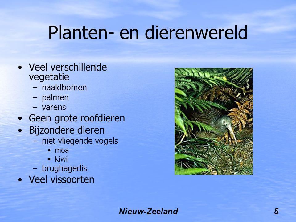 Planten- en dierenwereld