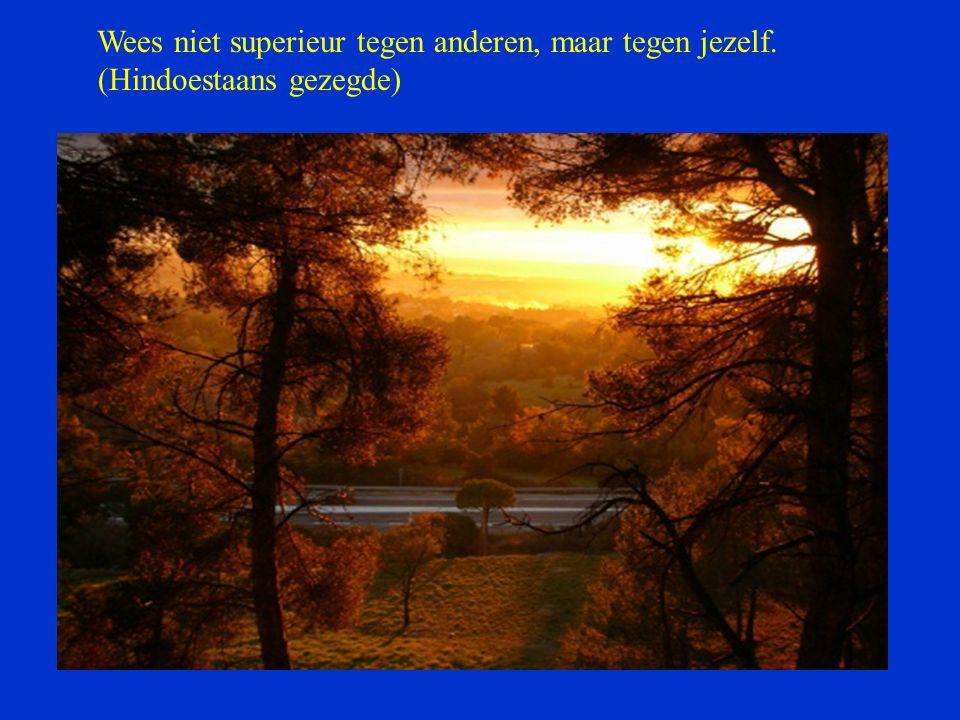 Wees niet superieur tegen anderen, maar tegen jezelf.