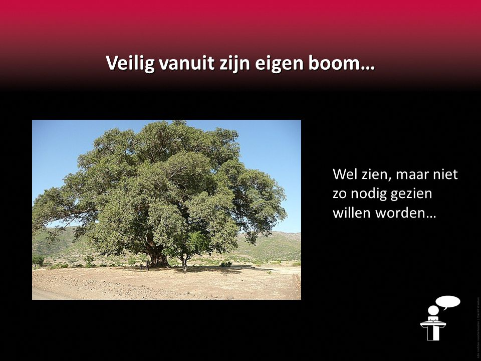Veilig vanuit zijn eigen boom…