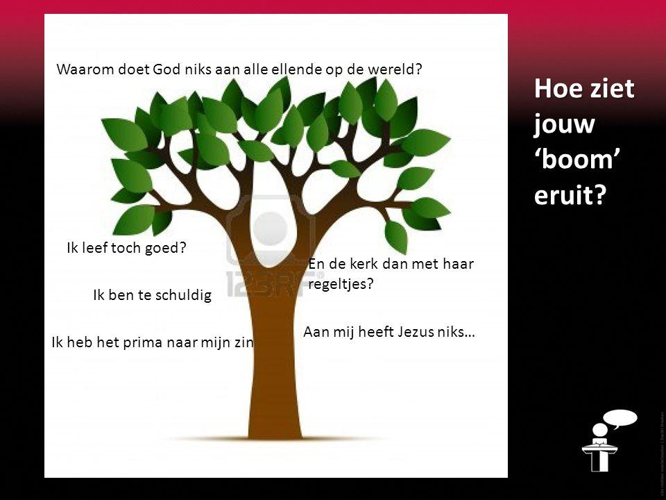 Hoe ziet jouw 'boom' eruit