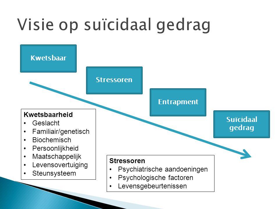 Visie op suïcidaal gedrag