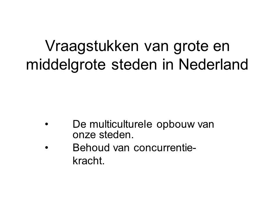 Vraagstukken van grote en middelgrote steden in Nederland