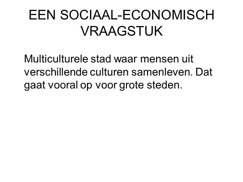 EEN SOCIAAL-ECONOMISCH VRAAGSTUK