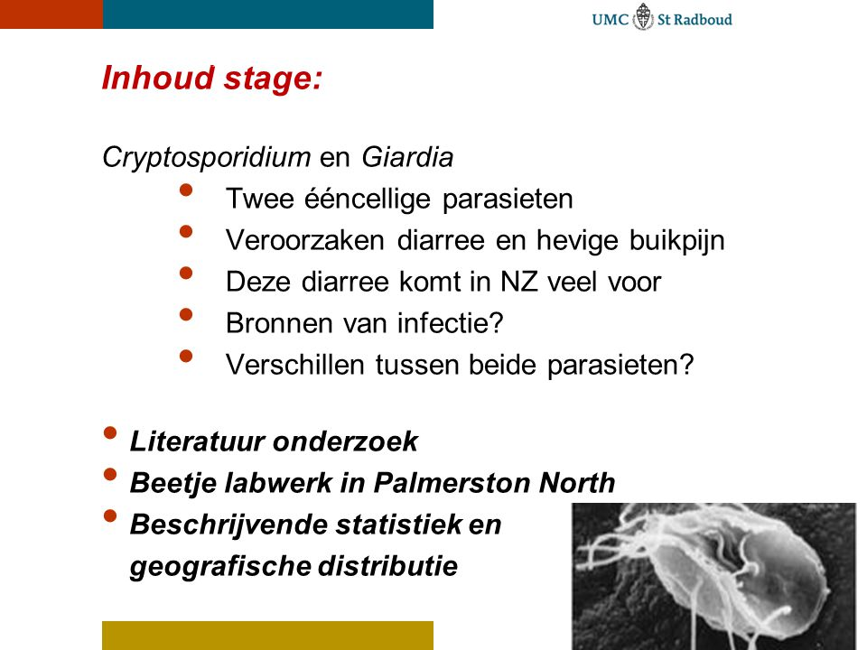 at hield WAWAT HIELD DE STAGKWVQijn stage in