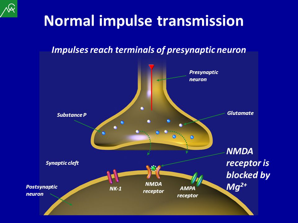 Normal impulse transmission